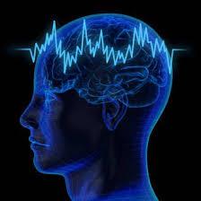 روانشناسی بازار سرمایه – سایکو ترید – ۶